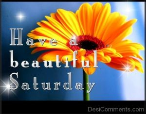 have-a-beautiful-saturday