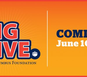 The Big Give is Back!